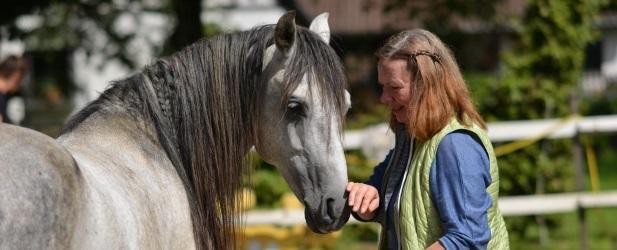 Tierkommunikation online! Beginn des nächsten Basis-Onlinekurses Gruppe