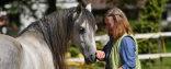 Tierkommunikation online! Beginn des nächsten intensiven Basis-Onlinekurses: 10. Oktober 2020, 10:00  Uhr